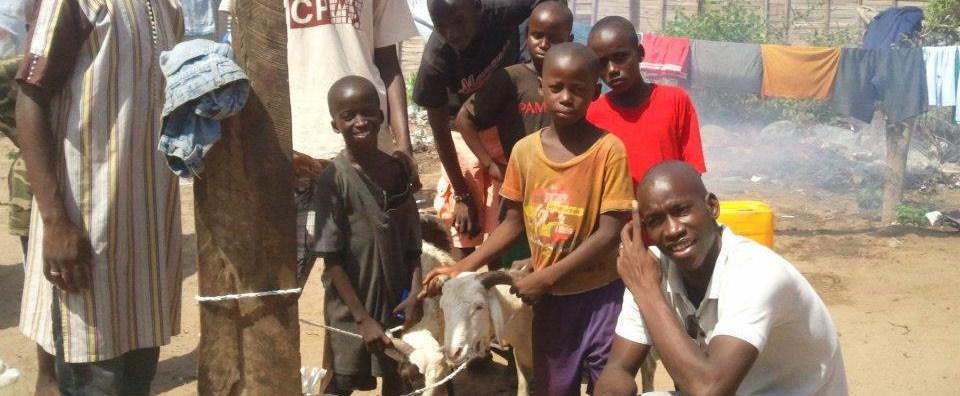 La Tabaski : Collectes & Partages aux enfants démunis