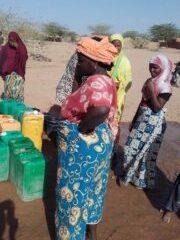 ACTION programmée  dans le  village d'AZZEL au Niger. 1000km de Niamey